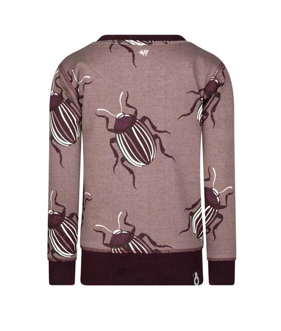 4 Funky Flavours Sweater Thrillseekers 20W6624